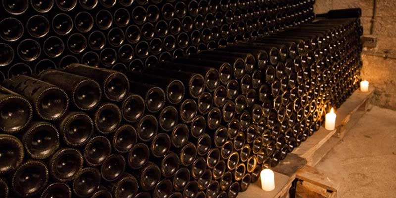 Party In Belgrade - Luxury - Wine tasting tour